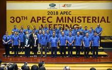 Dấu ấn Việt Nam sau 20 năm gia nhập APEC