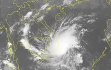 UBND TP HCM chỉ đạo khẩn ứng phó bão số 8