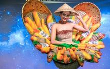 Độc đáo bộ trang phục của H'hen Niê mang đến Miss Universe