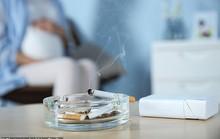 Thay đổi đáng sợ ở thai nhi nếu mẹ nhiễm khói thuốc lá
