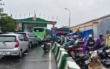 Nhiều người không biết lệnh cấm, phà Bình Khánh rối loạn khi bão số 9 đang đổ bộ