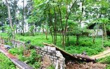 Hàng loạt cán bộ TP Sầm Sơn bị kỷ luật do sai phạm quản lý đất đai