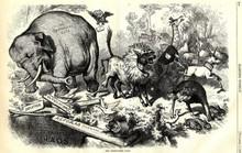 Mỹ: Vì sao đảng Dân chủ là lừa, còn Cộng hòa là voi?
