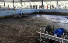 Xử lý nước thải cho hàng vạn hộ dân trước khi đổ ra sông Đồng Nai