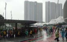 CĐV đội mưa đến sân sớm 4 giờ để xem trận Việt Nam - Malaysia