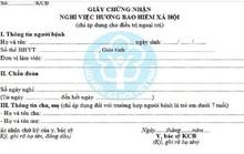 Thu hồi phôi mẫu giấy chứng nhận nghỉ việc hưởng BHXH