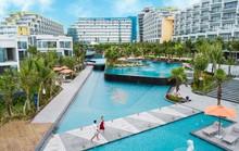 Có gì ở condotel sát biển đẹp nhất Nam Phú Quốc khiến du khách mê mẩn?