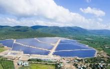 Khánh thành nhà máy Điện mặt trời TTC Krông Pa