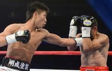 Cựu vô địch boxing thế giới người Nhật Bản đấu biểu diễn tại TP HCM