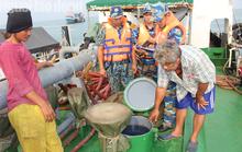 Cảnh sát biển vùng 4 lại lập công