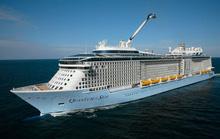Du lịch tàu biển hút khách