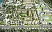 Everde City không thấy bê-tông chỉ thấy cây xanh