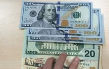 Bán 100 USD, một chủ tiệm vàng bị phạt 40 triệu đồng