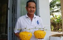 3,5 triệu đồng một trái dưa hấu thỏi vàng chưng Tết