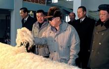 Triều Tiên sản xuất vải từ… đá