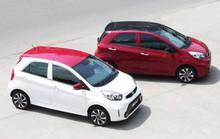 Xu hướng tiêu dùng xe ô tô cỡ nhỏ giá rẻ và Crossover