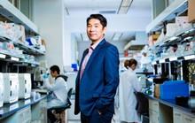Trông chờ robot ADN siêu nhỏ diệt ung thư