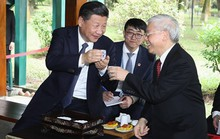 Tổng Bí thư hai nước Việt, Trung trao đổi Thư mừng năm mới
