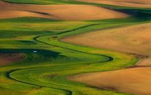 Vùng đất có những thảm cỏ đa sắc màu tuyệt đẹp