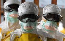 WHO cảnh báo bệnh X có thể gây đại dịch toàn cầu trong tương lai