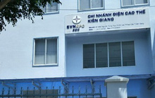 Tạm đình chỉ công tác giám đốc chi nhánh điện cao thế ở Kiên Giang