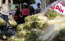 Chùm ảnh: Người Hà Nội nhiệt tình giải cứu củ cải