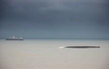 Vẫn còn 7 tàu chìm, mắc cạn trên vịnh Quy Nhơn