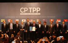 11 nước ký kết CPTPP - hiệp định thay thế TPP