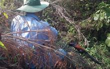 Xót xa thấy cảnh thợ săn tận diệt chim rừng mùa sinh sản