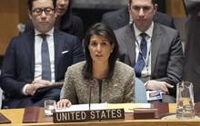 Đại sứ Mỹ tại LHQ: Mỹ đã nạp đạn và lên cò với Syria