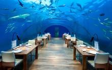 Khách sạn dưới biển đầu tiên trên thế giới