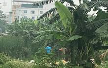 Sát hại sinh viên, phi tang ngoài bãi rác rồi trốn vào miền Nam