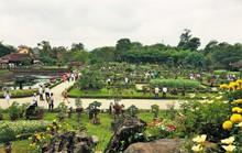 Ngắm tác phẩm bonsai cả nước hội tụ đọ dáng trong vườn Cơ Hạ