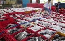 Nỗ lực gỡ thẻ vàng cho thủy sản