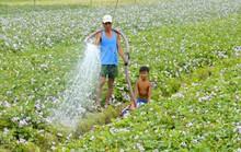 Hợp tác Mekong, dè chừng ông lớn