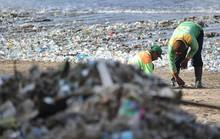 Bãi biển Đông Nam Á: Càng đẹp, càng khổ