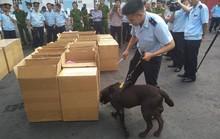 Phát hiện 2,5 tấn ma túy cực độc tại cảng Hải Phòng