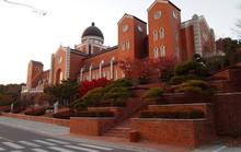 Mê đắm ngôi trường siêu đẹp trong hơn 100 bộ phim Hàn Quốc