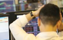 VinaCapital vẫn mua vào cổ phiếu khi thị trường điều chỉnh