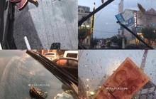"""""""Mưa"""" bạch tuộc, sao biển và tôm ở Trung Quốc"""