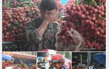 Bắc Giang bác bỏ tin vải thiều rớt giá kỷ lục, đổ bỏ