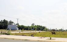 Đất nền Sài Gòn chỉ bớt nóng, giá không giảm mạnh