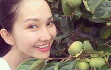 Khu vườn đầy cây trái, hoa thơm của Kim Hiền trên đất Mỹ