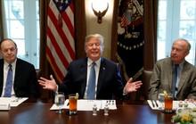 Lệnh cấm nhập cảnh của ông Trump bất ngờ thắng lớn