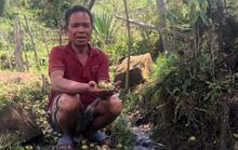 Sự thật về suối nước đắng chữa bệnh ở Kon Tum