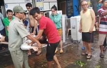 Lốc xoáy nhiều nơi ở Sài Gòn, cây xanh ngã rạp, 3 người trọng thương
