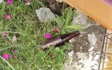 Dùng vỏ chai bia đâm chết người vì nói chuyện lớn tiếng