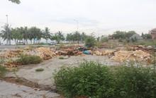 Ô nhiễm dưới chân bán đảo Sơn Trà