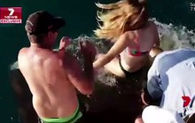 Bị cá mập cắn tay kéo xuống vùng biển đầy cá sấu