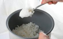 Mẹo bảo quản cơm nguội không bị thiu